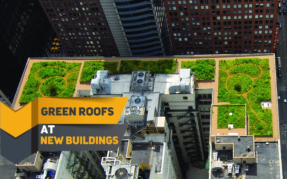Green-Roofs-at-New-Buildings